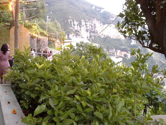 NUNZIA MARINA BOZZA. Nel meraviglioso borgo di Nocelle, incastonato fra la Costiera amalfitana e i Monti Lattari, al centro del famoso Sentiero degli Dei il 16 luglio scorso si è […]