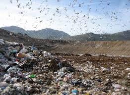 """INQUINAMENTO E DISATRO AMBIENTALE NAPOLI – """"Finalmente una buona notizia che và nella direzione auspicata dalla cittadinanza attiva dei territori inquinati in tema di repressione dei reati ambientali"""". Ad affermarlo, […]"""